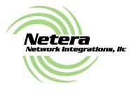 netera networks logo